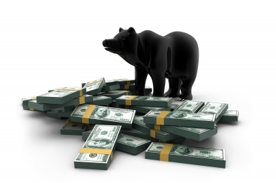bear-money